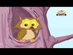 A wise old owl lived in an oak Poem Lyrics and Video HD