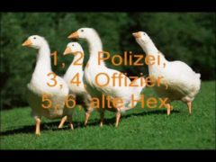 1, 2, Polizei, 3, 4, Offizier Lyrics and Video