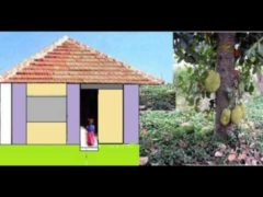 Kakke Kakke Koodevide Video With Lyrics | Malayalam Nursery Rhymes Video Free Download for Kids | Children's Song Baby Animation | 3GP MP4 HD FLV Online YouTube Collection
