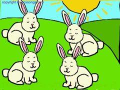 Sleeping Bunnies Song Lyrics and Video See the bunnies
